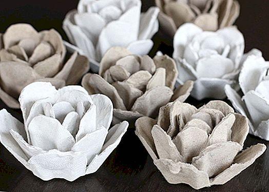 13 Crafty způsoby, jak používat vejce kartony