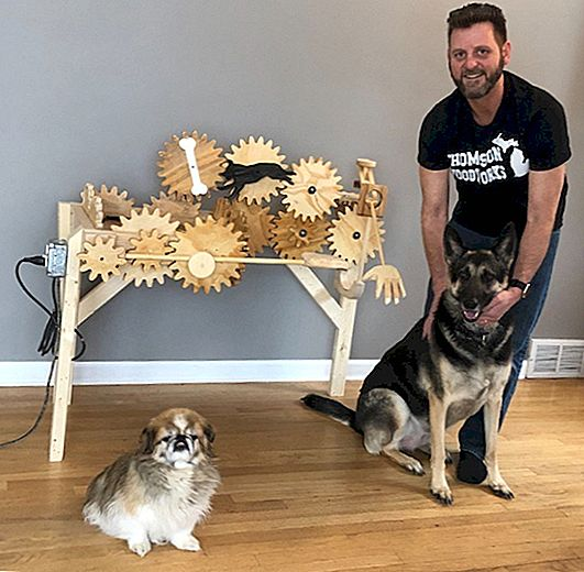 Clever Crafter izdeluje Canine Caressing Contraption